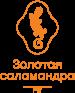 Российская общественная премия в области страхования «Золотая Саламандра»